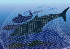 Harmful fishing  Network Royalty Free Stock Image