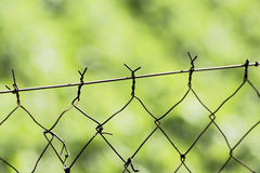 Harmless Fence Royalty Free Stock Images