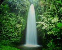 Harmoni av naturen Royaltyfri Bild
