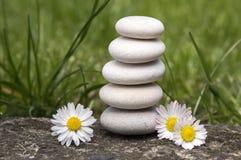Harmonia, równowaga, prosty otoczaków wierza i stokrotka kwiaty w kwiacie w trawie, prostota Obrazy Stock
