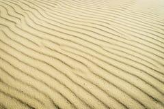 Harmonic pattern of rippled sand surface on beach. Climate change, global warming concept. Baltic sea coast, Pomerania, Poland stock photo