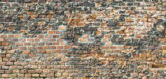 Harmonic red brick wall Royalty Free Stock Photography