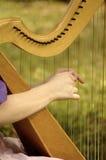 Harmonie de chaîne de caractères d'harpe Photo stock