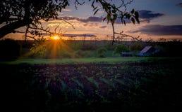 Harmonie en gunst Zonsondergang over het landelijke landschap stock afbeeldingen