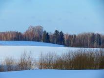 Harmonie von Farben einer Winterlandschaft Stockfotos