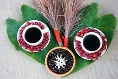 Harmonii pojęcie, kawowa fasola, czerni piec kawiarni Obrazy Royalty Free