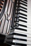 Harmonika Royalty-vrije Stock Afbeelding
