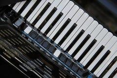 Harmonika op vertoning in een winkel royalty-vrije stock fotografie