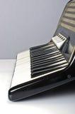 Harmonikatoetsenbord Stock Afbeelding