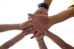 Harmonious hand of team work Stock Photo