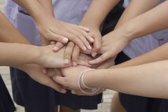 Harmonious, hand teamwork Stock Photography