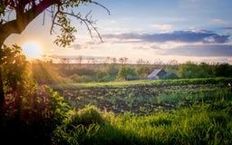 Harmoniskt lantligt landskap på solnedgången arkivbilder