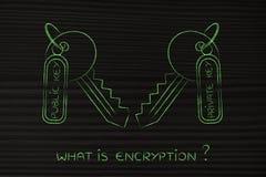 Harmonização privada & chaves públicas, conceito dos algoritmos de criptografia Fotografia de Stock Royalty Free