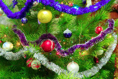 Harmonous and dressed up New Year`s fur-tree. Image of harmonious and dressed up New Year`s fur-tree Royalty Free Stock Images