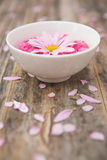 Harmony. Aromatherapy salts & flowers - shallow depth of field Royalty Free Stock Photography