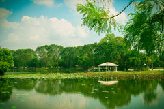 Harmony湖 库存图片