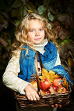 Harmony autumn Royalty Free Stock Images