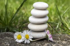 Harmony and balance, simple pebbles tower and daisy flowers in bloom in the grass, simplicity, five stones. Harmony and balance, simple pebbles cairn tower and Stock Photography