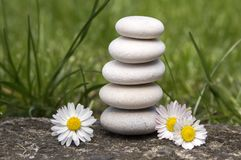 Harmony and balance, simple pebbles tower and daisy flowers in bloom in the grass, simplicity. Five stones stock images