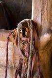 Harness del caballo y rectángulo estable Fotos de archivo