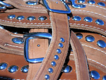 Harness Leather. Studs on harness leather reflect clear blue western sky stock image