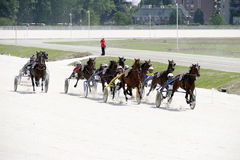 Harness race course Royalty Free Stock Images