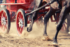 Harness race. Draft horses in full harness at a competition in Romania Royalty Free Stock Image