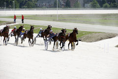 Harness racecourse Royalty Free Stock Photography