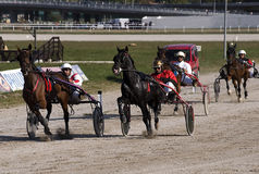 Harness racing-2 Royalty Free Stock Image