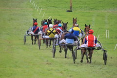 Harness Racing. Harness race of trotters in France Royalty Free Stock Photo