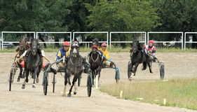 Harness racing 3. Romanian National Trotting Derby, Ploiesti 2011-07-03 royalty free stock photos