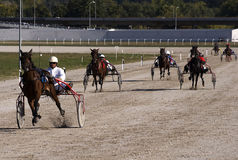 Harness racing-3 Stock Photography