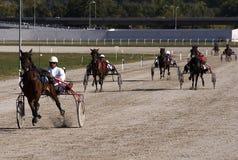 Harness Racing-3 Stock Photography