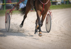 Harness Racing Stock Images