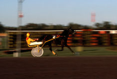 Harness Racing Blur 2. Panned photo at a horse racing track Stock Image