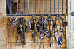Harness Racing Equipment Stock Photo