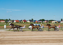 Harness Racing on Karlshorst racetrack Royalty Free Stock Photo