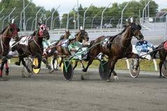 Harness Racing at Kawartha Downs - Ontario Stock Photography