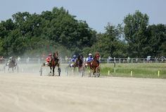 Harness racing Royalty Free Stock Images