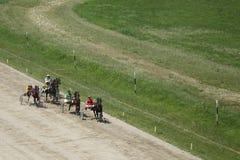 Harness racing Stock Photos