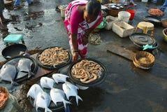 HARNEY, MAHARASHTRA, INDIA, Januari 2015, Lokale verkopersvrouw in vissenmarkt in Konkan royalty-vrije stock afbeelding