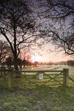 Harnham water meadows Stock Photos