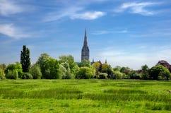 Harnham wody łąka, Salisbury, Anglia zdjęcie royalty free
