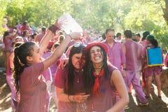 Haro Wine Festival, La Rioja Fotografie Stock