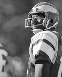 Harold Carmichael. Philadelphia Eagles WR Harold Carmichael, #17. (Image from b&w Royalty Free Stock Photography