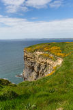 Haroldstone Chins Wales Coast Path Pembrokeshire Royalty Free Stock Photo