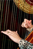Harp Stock Afbeelding