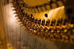 Harp detail. Harp strings detail close up Royalty Free Stock Photos
