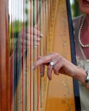 Harp player Royalty Free Stock Images