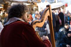Harp player with audiance Stock Photos